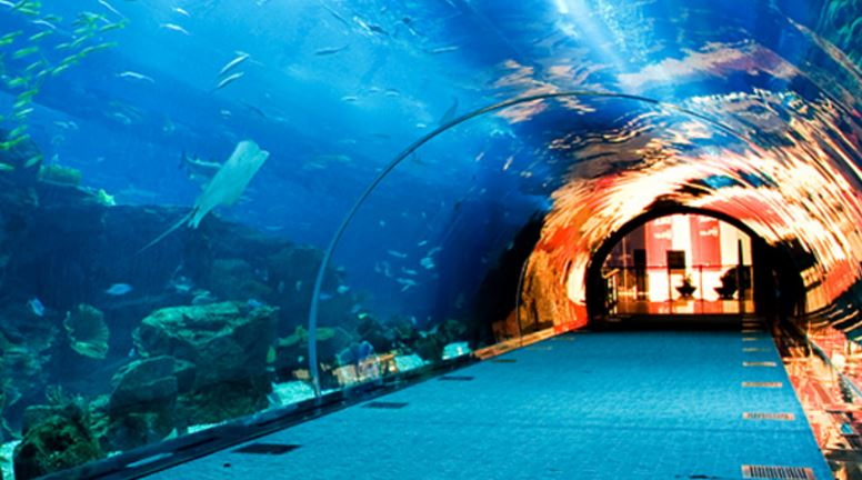 Contact of Dubai Aquarium customer service (phone, address)   Customer Care Contacts