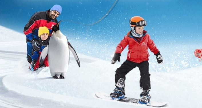 Ski Dubai Is An Indoor Resort Located Within The Mall Of Emirates In UAE Was Opened Year 2005 And Boasts 5 Slopes