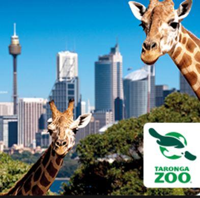 Contact of Taronga Zoo, Sydney (phone, address) | Customer ...
